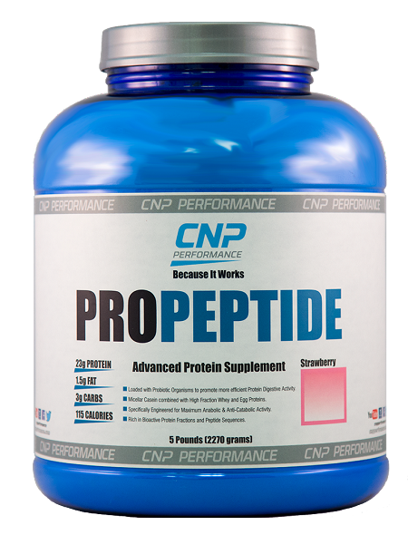 CNP PROPEPTIDE STRAWBERRY